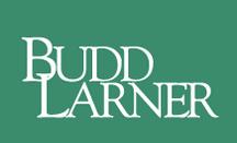 Budd Larner